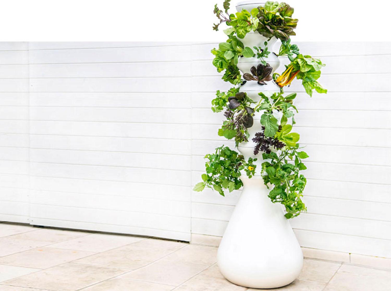 Lettuce Grow Tower
